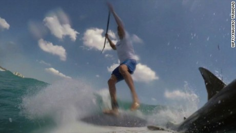 NS Slug: FL:SHARK KNOCKS MAN OFF PADDLE BOARD-CAUGHT ON CAM    Synopsis: Caught on camera: A Florida paddle-boarder comes in close contact with a shark.    Keywords: FLORIDA PADDLE BOARD SHARK JUPITER