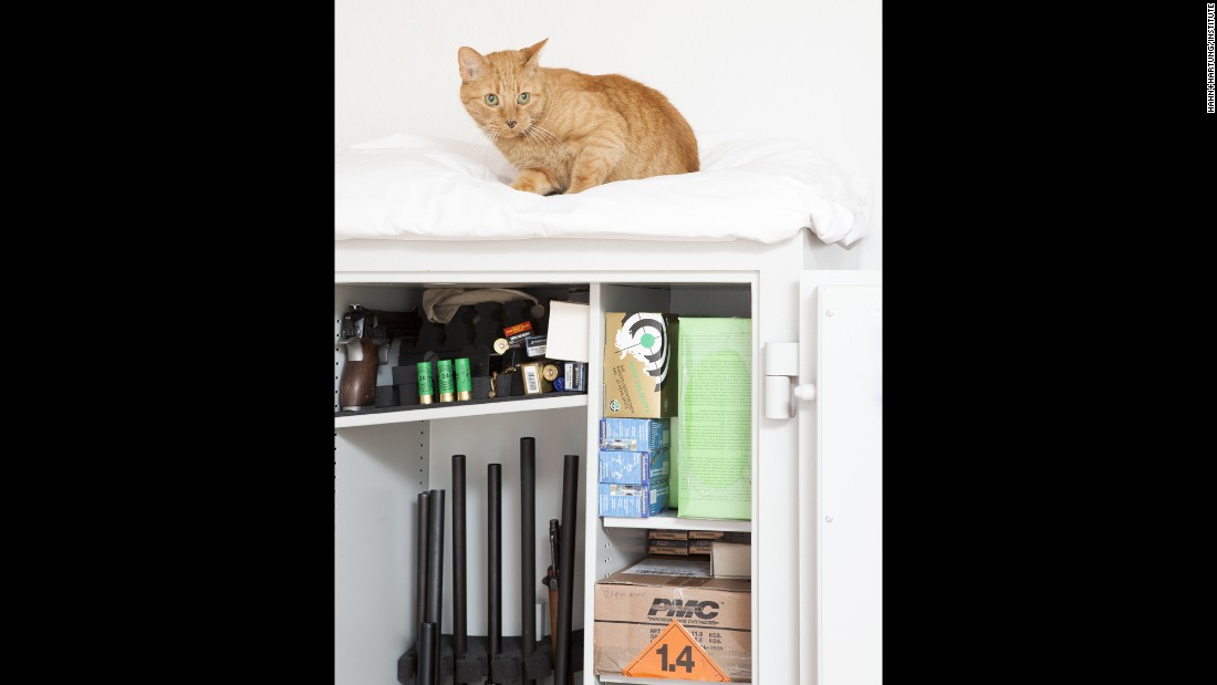 Ohmen's cat sleeps on top of his weapon closet.
