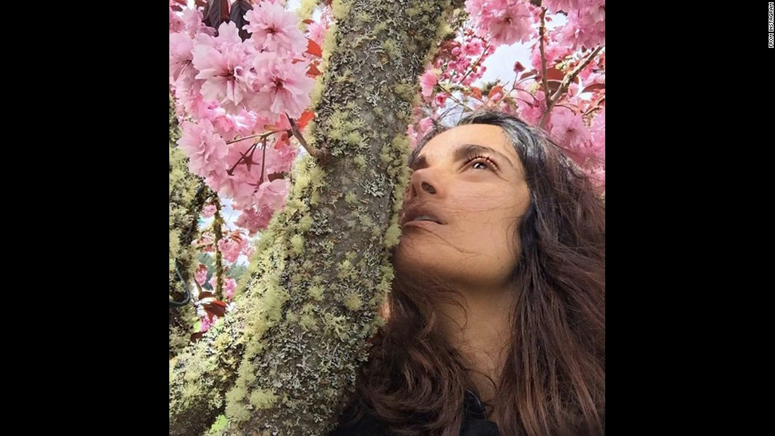 "Actress Salma Hayek <a href=""https://www.instagram.com/p/BEWQ8yosFs0/"" target=""_blank"">gets close to a tree</a> on Monday, April 18."