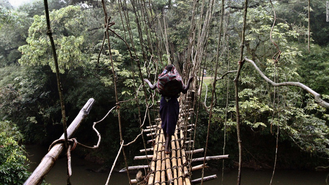 Bamboo is hugely versatile and has wide range of uses all over the world. Pictured, a young girl walks across a makeshift bridge made out of bamboo in the Democratic Republic of Congo.