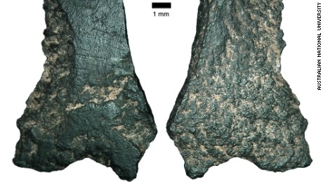 The ax fragments were discovered in the 1990s but were dated incorrectly, until now.