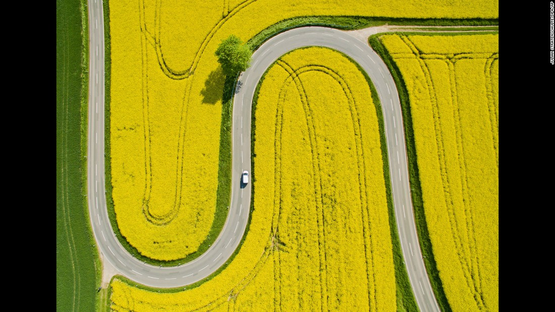 A road winds through flowering canola fields near Nienstedt, Germany, on Thursday, May 12.