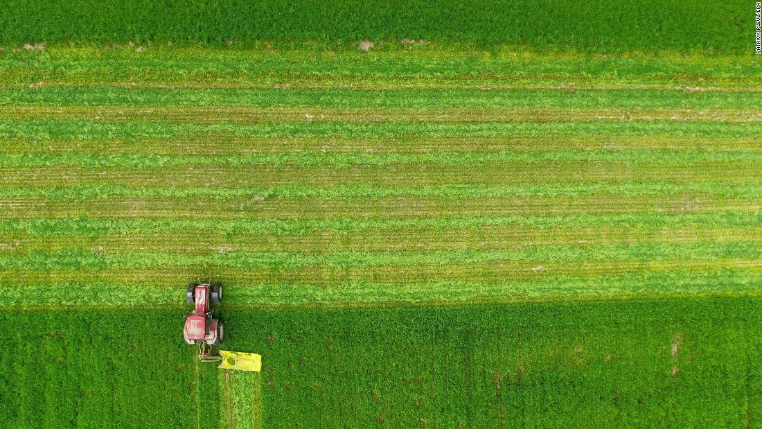 A farmer reaps fodder on a field near Treplin, Germany, on Monday, May 16.