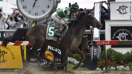 Exaggerator with Kent Desormeaux aboard wins the 141st Preakness Stakes horse race at Pimlico Race Course, Saturday, May 21, 2016, in Baltimore.  (AP Photo/Mike Stewart)