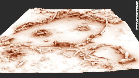 A 3D reconstruction of the Bruniquel Cave structures.
