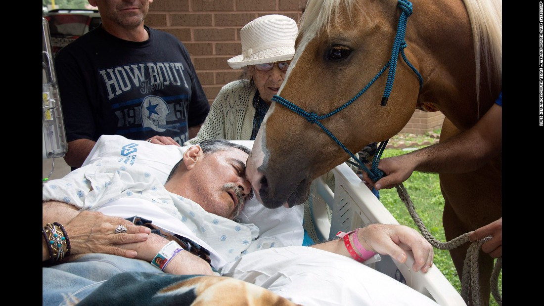 "A horse nuzzles Vietnam veteran Roberto Gonzales outside a VA hospital in San Antonio on Saturday, May 21. Gonzales, a disabled horse trainer, <a href=""http://www.cnn.com/2016/05/23/health/dying-veteran-reunited-with-horses-trnd/"" target=""_blank"">wanted to spend some of his precious final moments with two of his beloved friends:</a> his horses, Ringo and Sugar. He died two days later."