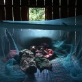 Children under malaria bed net