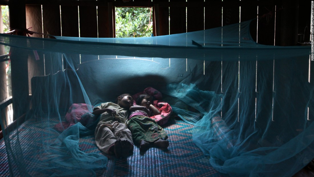 Insecticide-treated bed nets (pictured) have been pivotal in bringing down malaria cases in recent years. But insecticide resistance is developing and likely to spread. With minimal new options to replace them, control efforts need a more sustainable option, such as a vaccine.