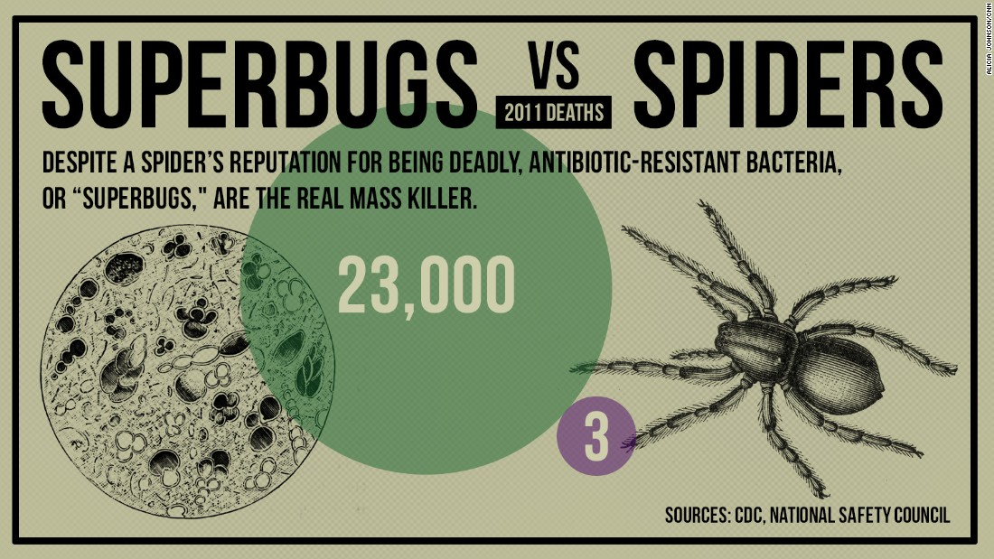 gfx-death-superbug_vs_spider