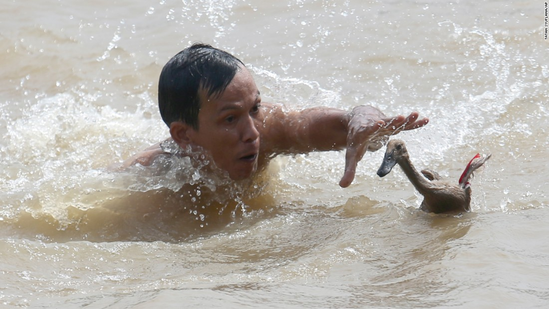 A man tries to catch a duck during a competition at the Dragon Boat Festival in Tangerang, Indonesia, on Thursday, June 9.