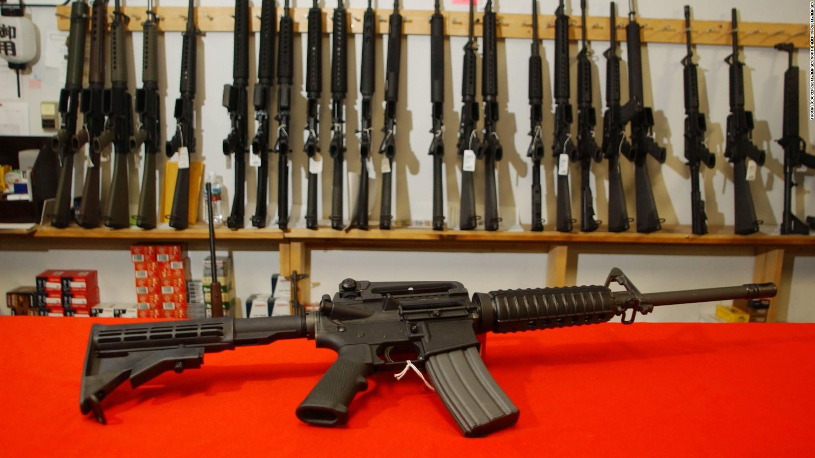banning the guns essay