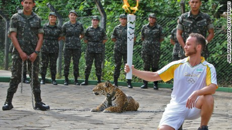 Jaguar shot dead after escape during Olympic torch event