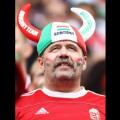 10 Euro 2016 Fan Faces