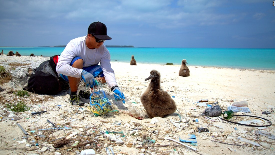 "There are different ideas about how to address the crisis. The <a href=""http://www.noaa.gov"" target=""_blank"">U.S. National and Atmospheric Association</a> favors beach cleaning and public education at local level, combined with challenging policymakers and plastic producers to promote conservation."