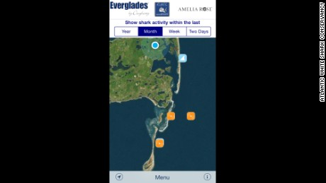 The Atlantic White Shark Conservancy, a Chatham, Massachusetts-based nonprofit,  has launched a shark-sighting mobile app.