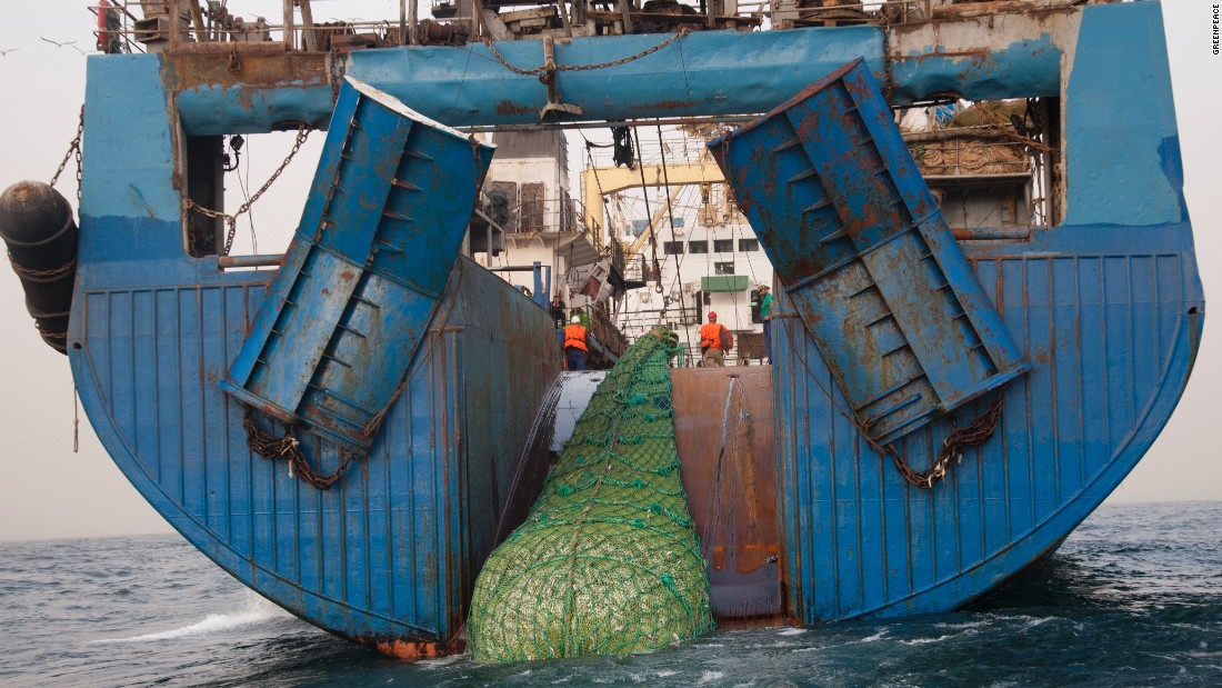 "The 120 meter long Russian super trawler  ""Mikhail Verbitsky"" fishing in West Africa waters.  Foreign fleets are plundering the West African waters while fish stocks are diminishing. Bycatch like dolphins end up dead or dying in the giant nets of the super trawler."