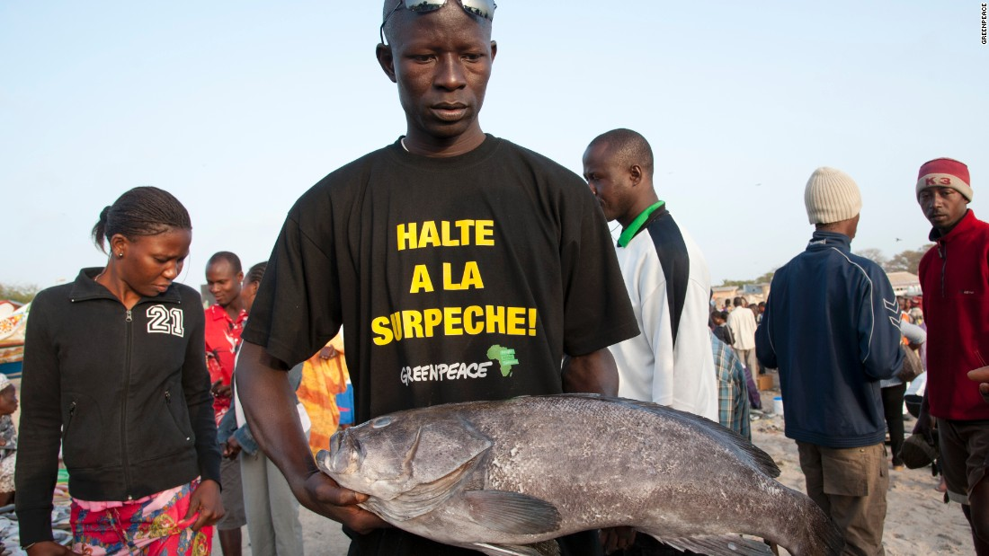 "Fish monger with T-shirt reading ""stop overfishing"" at Soumbedioune fish market in Dakar, Senegal."