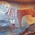 african rock art Somaliland - Cow