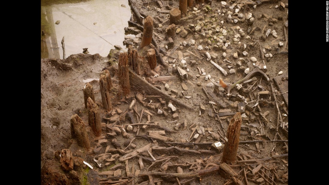 A Yearold World Has Been Unearthed In Englands Fenlands - Guy discovered middle woods incredible