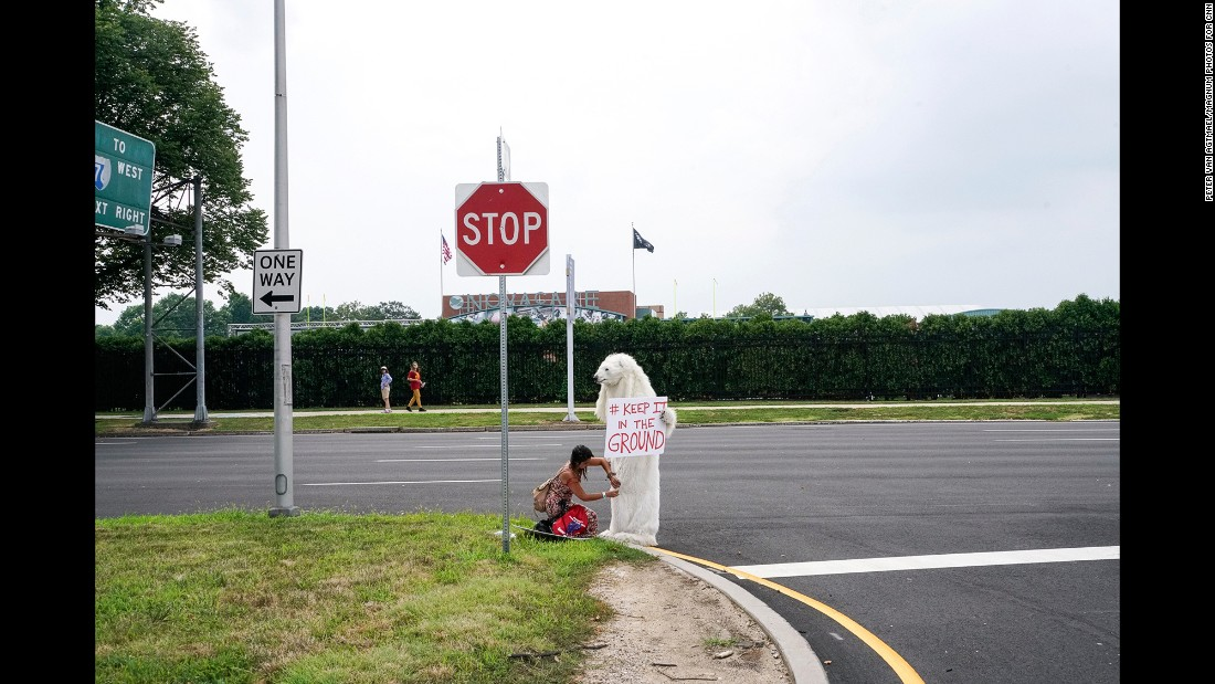 An activist wears a polar bear costume by the side of a road.