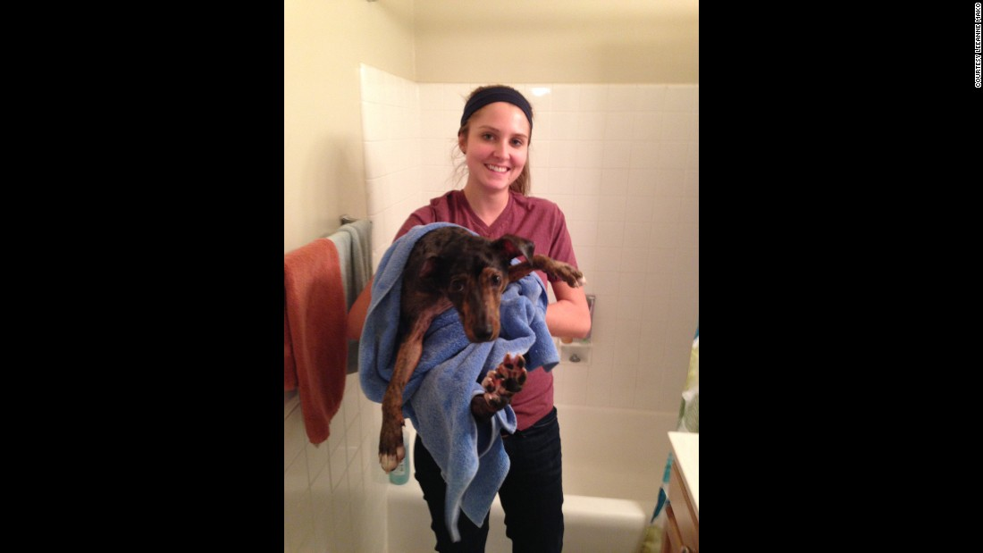 "This was Hester during her first year of grad school at George Washington University, giving her dog, Winston, a bath. ""I'd say this is the only picture I can find where I look 'healthy,' "" she said.<br />"