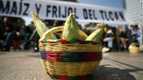 Greenpeace activists place a basket with corn during a protest 13 December, 2007 in front of the Angel of the Independence monument in Mexico City against the NAFTA (North American Free Trade Agreement) between Mexico, the U.S. and Canada. AFP PHOTO/Alfredo ESTRELLA (Photo credit should read ALFREDO ESTRELLA/AFP/Getty Images)