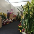 athletes village florist