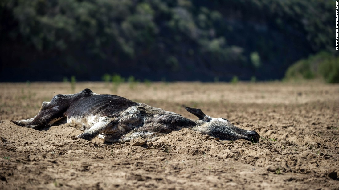 South Africa is experiencing the worst droughts on record, with thousands of communities and millions of people experiencing water shortages.