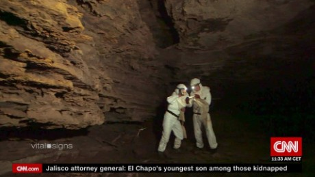 Virus hunters look for deadly diseases in bat caves