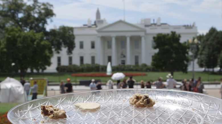 Taste testing Trump and Clinton's cookies
