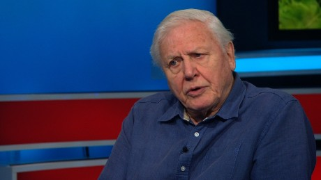 Attenborough: Poaching 'will rest heavily' on humanity