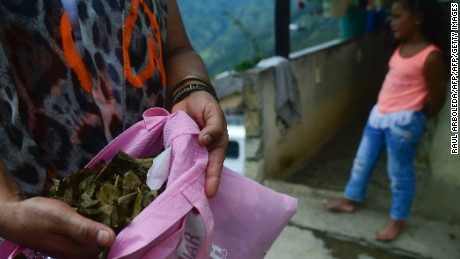 A woman resident of Pueblo Nuevo, Briceño municipality, Antioquia department, Colombia, shows coca leaves as the government and the Revolutionary Armed Forces of Colombia leftist guerrillas inaugurate a voluntary pilot plan to eradicate coca plantations on July 10, 2016. Cocaine trafficking has fueled the country's deadly civil war over the past five decades. The biggest rebel force, the FARC, and the government signed a definitive ceasefire and disarmament agreement on June 23, 2016 which gives hope that efforts to replace and eradicate illegal crops can now thrive. Colombia is ranked the largest cocaine producer in the world and its production surged by nearly half its previous amount last year, United Nations experts said on July 8.  / AFP / RAUL ARBOLEDA        (Photo credit should read RAUL ARBOLEDA/AFP/Getty Images)