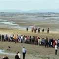 Laytown beach horse racing Ireland