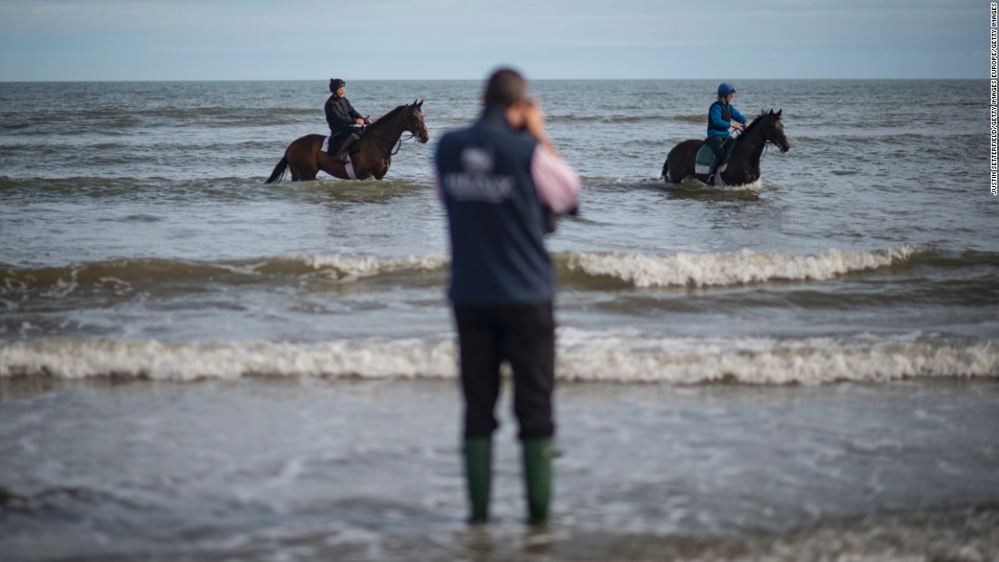 Horses walk through the water ahead of a race. Races are run over distances ranging from five furlongs to two miles.