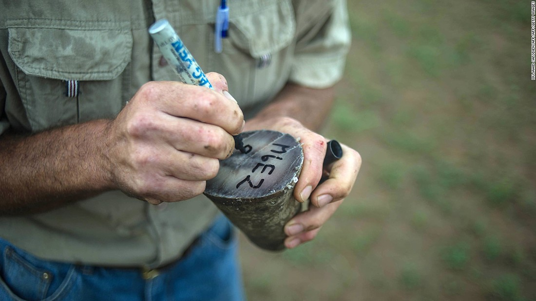 A ranger marks trimmed rhino horns to be weighed and stored in a bank safe or secure depository.