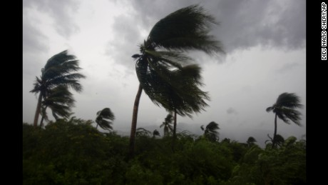 Wind blows coconut trees during the passage of Hurricane Matthew in Port-au-Prince, Haiti, Tuesday, Oct. 4, 2016. Hurricane Matthew roared into the southwestern coast of Haiti on Tuesday, threatening a largely rural corner of the impoverished country with devastating storm conditions as it headed north toward Cuba and the eastern coast of Florida. (AP Photo/Dieu Nalio Chery)