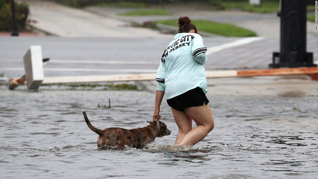 A women helps a dog walk through floodwaters in Port Orange, Florida, on October 7.