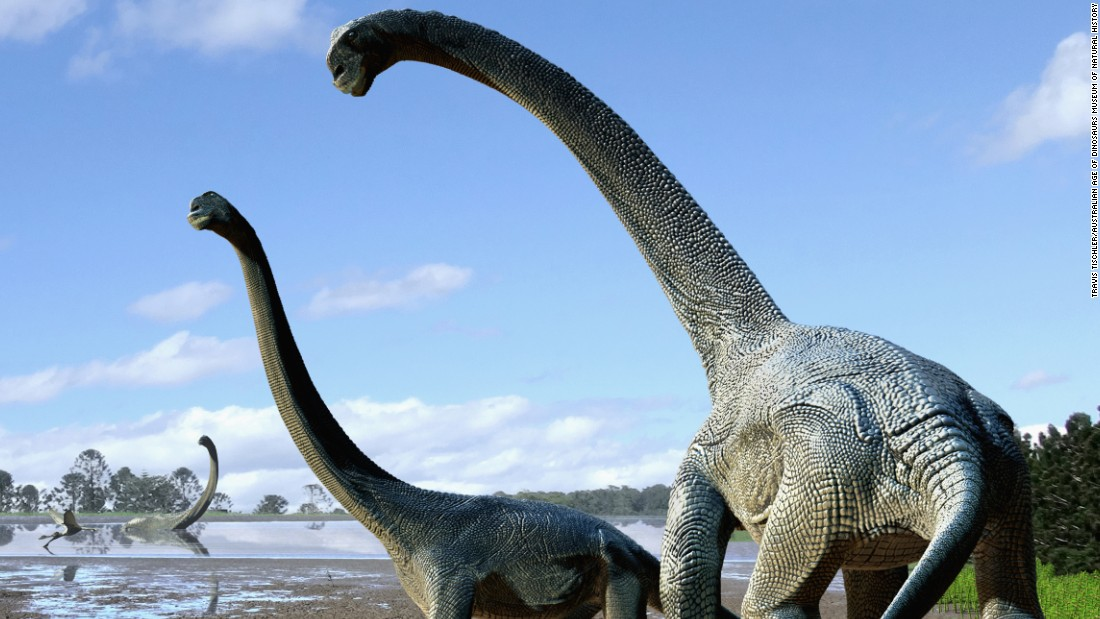 Meet Savannasaurus, a new huge dinosaur species