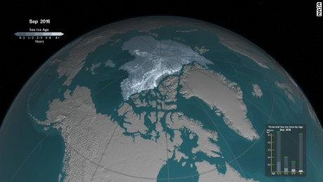 Watch as old sea ice vanishes