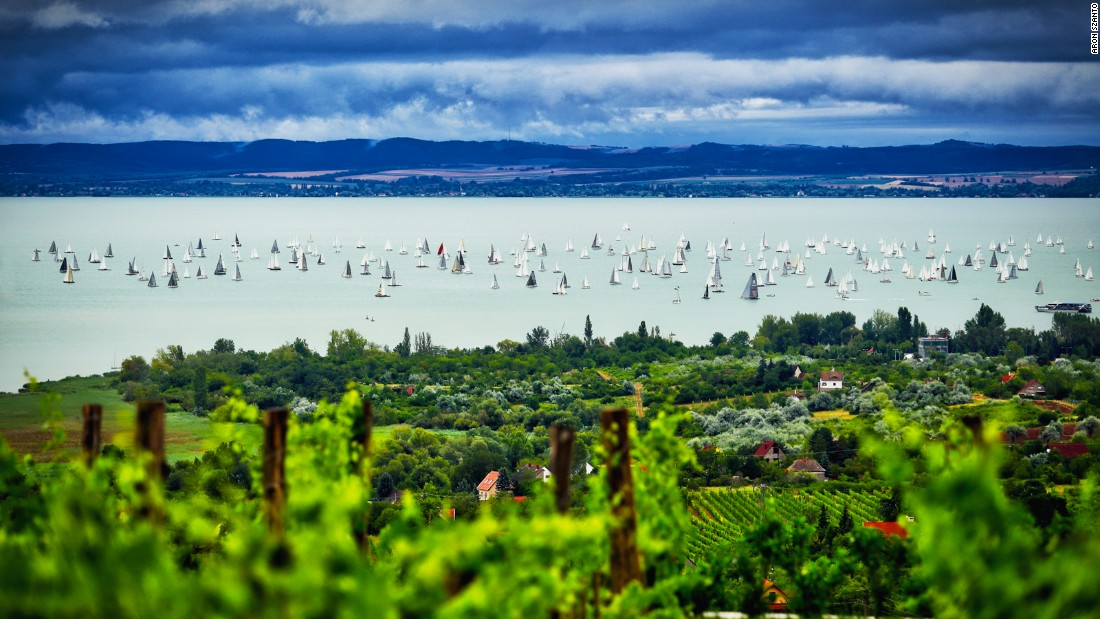 Aron Szanto's photographed Hungary's Blue Ribbon Regatta from a neighboring vineyard.
