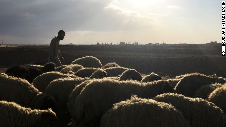"Shukar Mahmoud is an Iraqi shepherd, who along with his flock of 40 sheep, is caught between two checkpoints outside Bazwaya, a town about 4 kilometers (almost 3 miles) from Mosul. Behind him, Iraqi security forces continue to battle ISIS militants and ahead, a Kurdish checkpoint that refuses him passage because of his ""Arab sheep."""