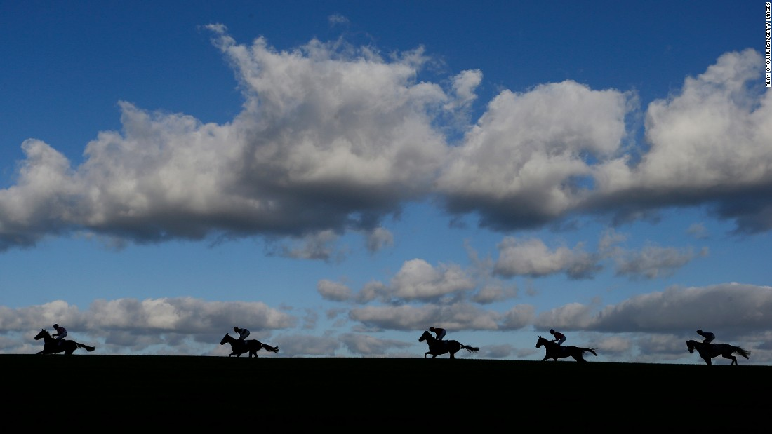 "Horses race in Wincanton, England, on Saturday, November 5. <a href=""http://www.cnn.com/2016/11/01/sport/gallery/what-a-shot-sports-1031/index.html"" target=""_blank"">See 35 amazing sports photos from last week</a>"