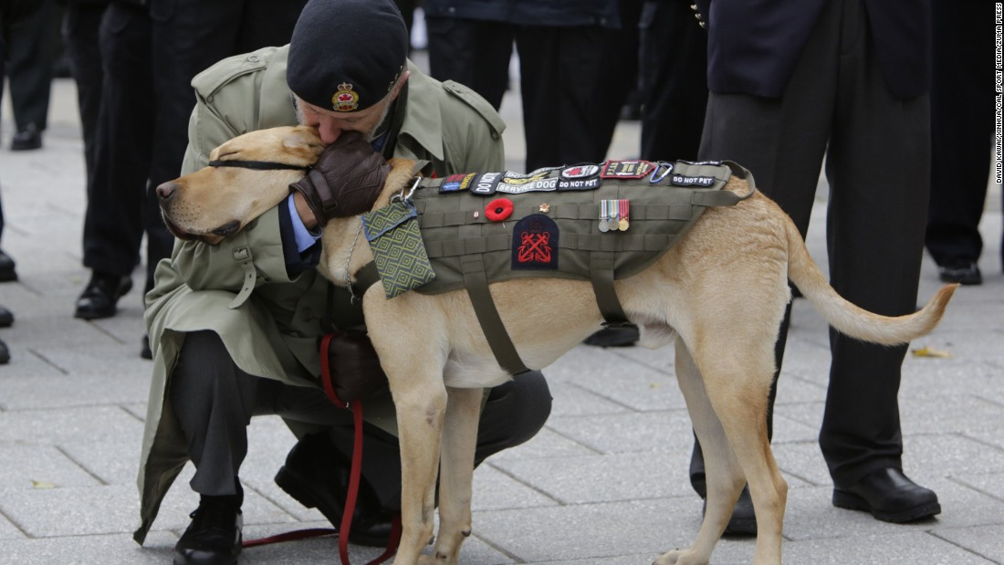 A veteran kisses his service dog during Remembrance Day ceremonies at the National War Memorial in Ottawa, Ontario, on November 11.