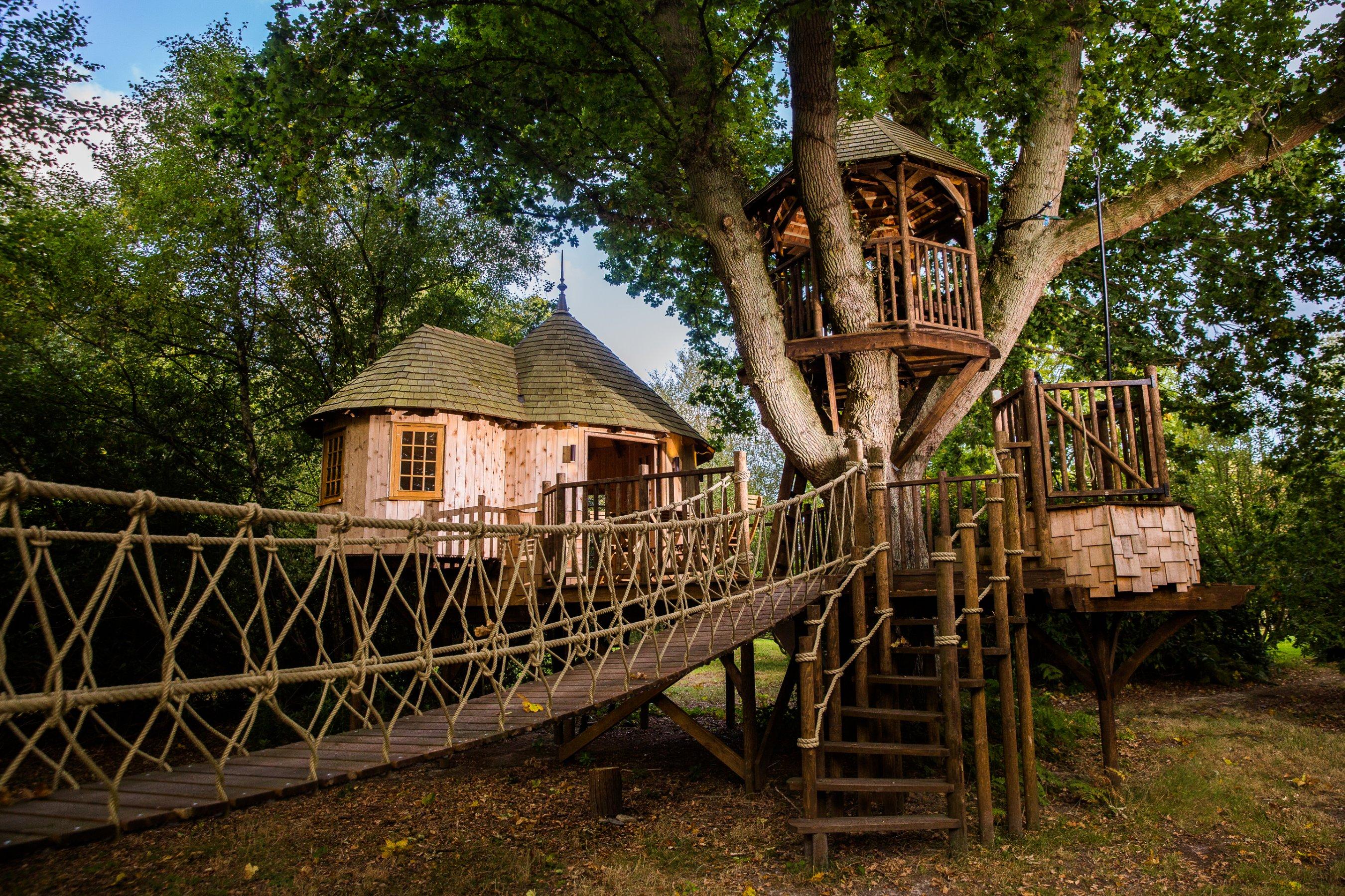 Into The Dark Treehouse Plot