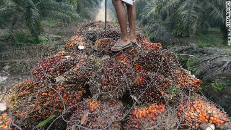 Non-certificated palm oil is linked to deforestation.