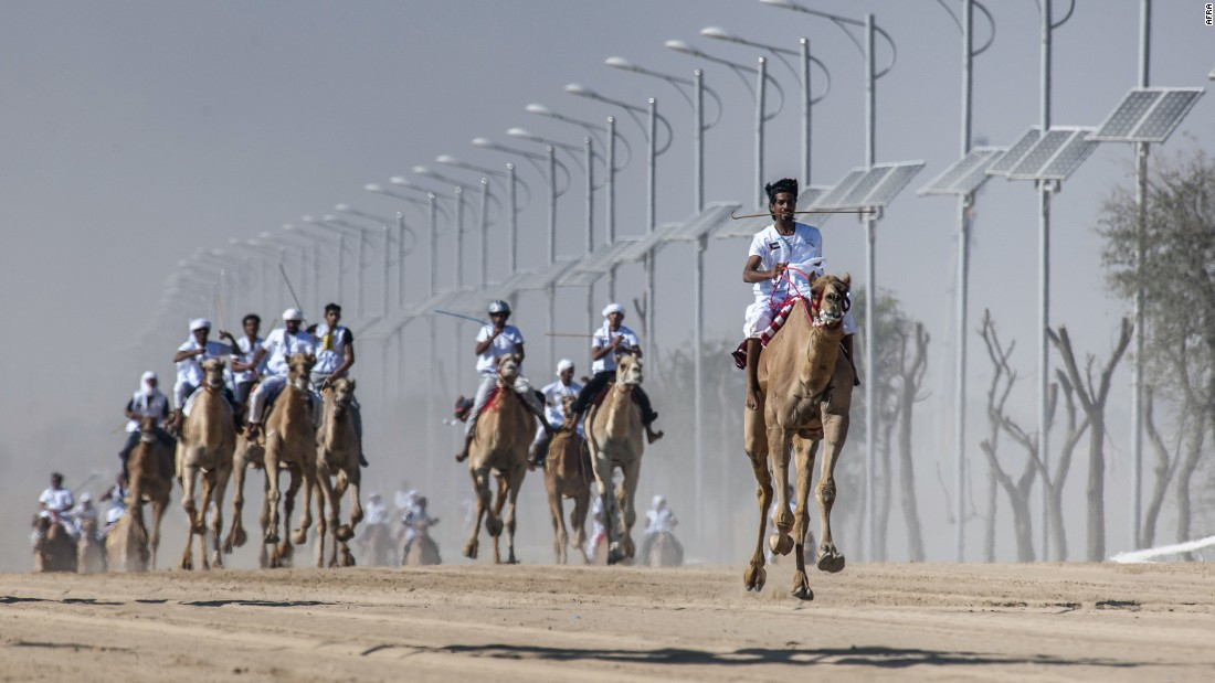 The marathon stretches 15 miles (25km) across the desert -- making it the longest camel race in the United Arab Emirates.