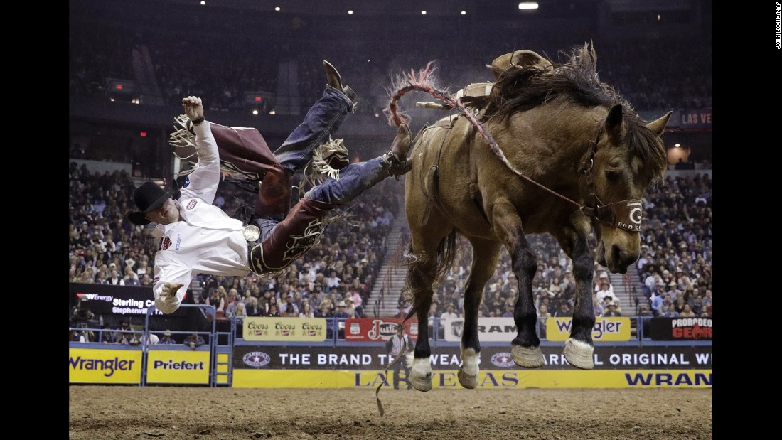 Sterling Crawley gets tossed off a horse Saturday, December 10, at the National Finals Rodeo in Las Vegas.