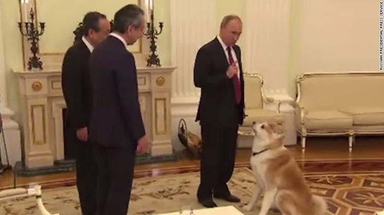 russia putin dog japan media tricks vo_00000918
