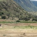 New Year fitness holiday Tanzania (Rothschild Safaris)