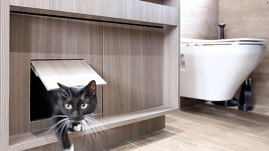 Cat Flats: Designing human apartments for feline friends - CNN Style
